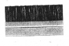 Dust cover seal,nylon brush alu.profile, 1m